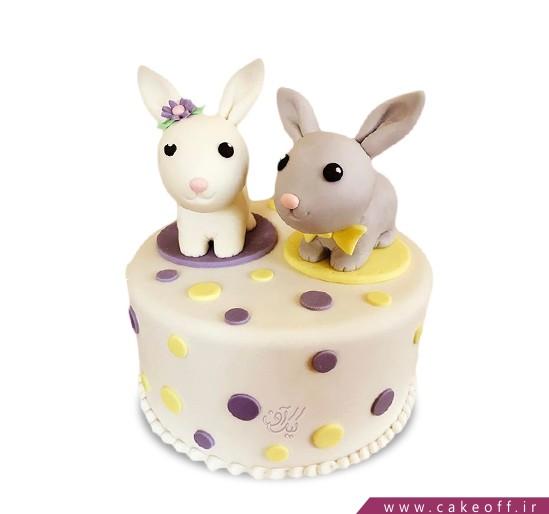 کیک خرگوش 13