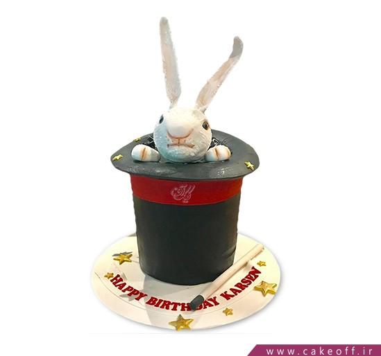 کیک خرگوش 15