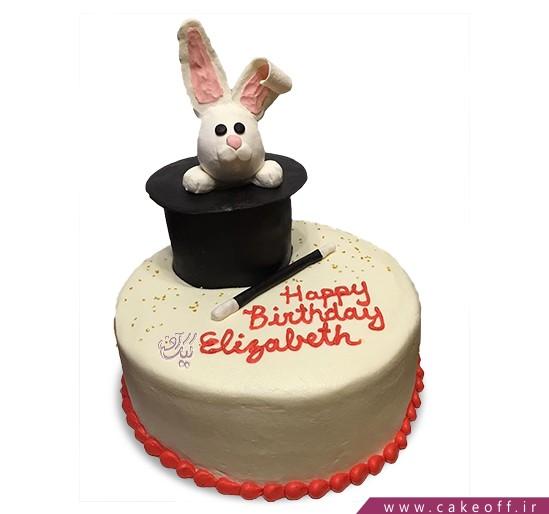 کیک خرگوش 16