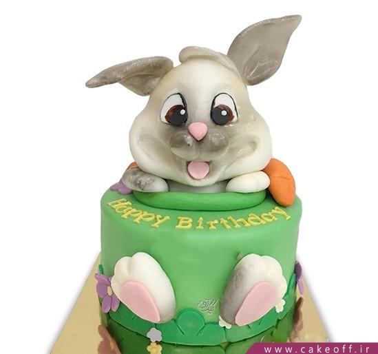 کیک خرگوش 17