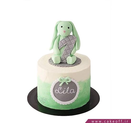 کیک خرگوش 21