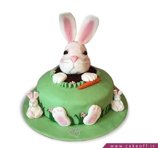 کیک تولد بچه گانه - کیک خرگوش 23 | کیک آف