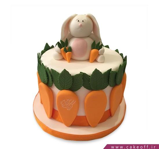 کیک تولد بچگانه - کیک خرگوش 33 | کیک آف