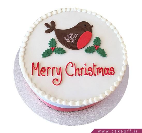 کیک کریسمس - کیک پرستویی در برف | کیک آف