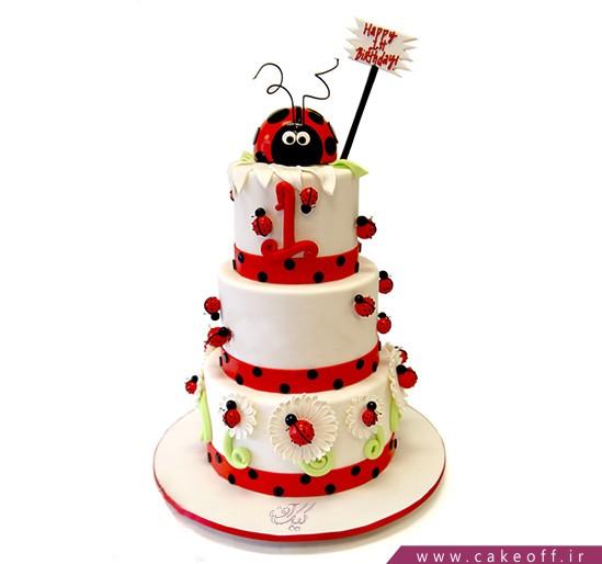 کیک باران کفشدوزک ها