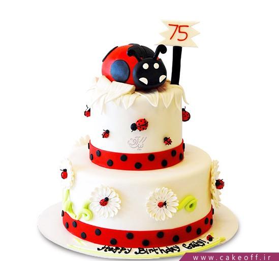 کیک تولد کفشدوزک گلی