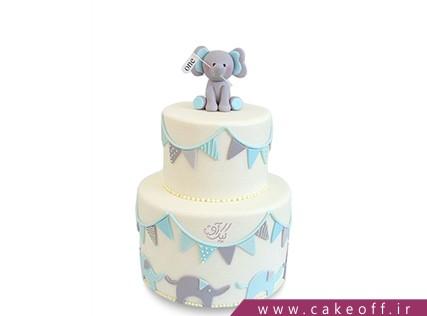 کیک تولد حیوانات - کیک بچه گانه - کیک ابر و باد فیلی | کیک آف
