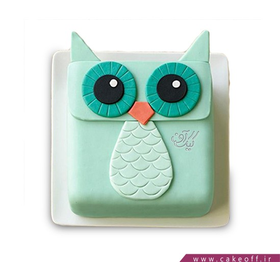 کیک بچگانه - کیک جغد دانا   کیک آف