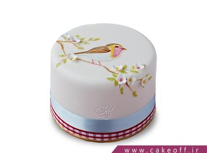 سفارش کیک نقاشی شده - کیک چکاوک | کیک آف