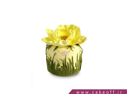 کیک زنانه - کیک تولد زرِ بوستان | کیک آف