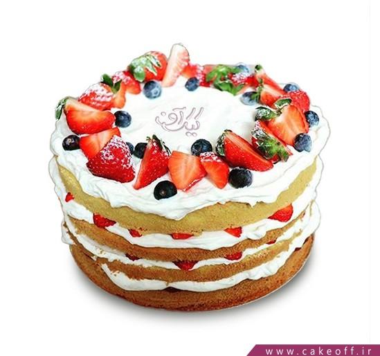 کیک میوه ای 11