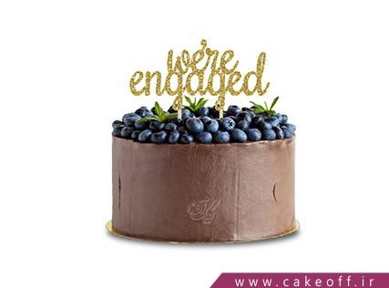 کیک شکلاتی - کیک انگور شکلاتی | کیک آف